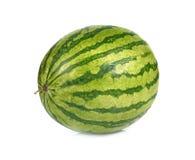 Wodny melon na białym tle obraz stock