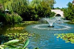 Wodny Ogród Zdjęcia Stock