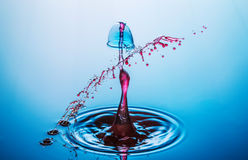 Wodny opadowy karambol fotografia royalty free
