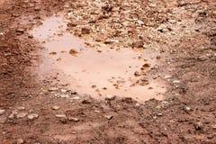 Wodny paddle na ulicie po spada deszczu Sposób po deszczu Brudna kałuża na drodze po deszczu Droga gruntowa z błotnistymi kałużam Obrazy Royalty Free
