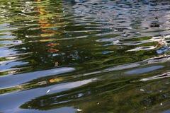 Wodny Reflexion Obrazy Stock