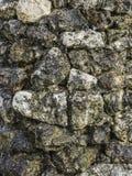 Wodny spływanie na textured mokrej skały ścianie Zdjęcia Stock