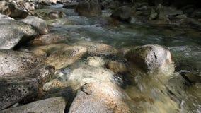 Wodny spływanie od siklawy gnania puszka zatoczka z skałami i głazy wliczając audio Brzmi 1080p zbiory wideo