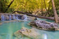 Wodny spadek w wiosna sezonie lokalizować w głębokim las tropikalny dżungli narodzie Zdjęcia Royalty Free