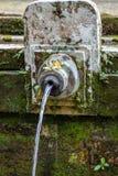 Wodny spout z canang sari przy Gunung Kawi, świątynny i pogrzebowy, kompleksem w Tampaksiring, Bali, Indonezja obraz stock