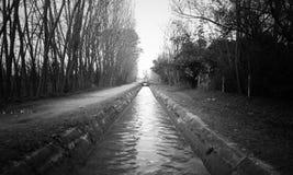 Wodny strumień Czarny I Biały fotografia royalty free