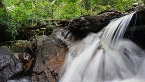 Wodny strumień przy tropikalnym lasem deszczowym Malezja Fotografia Royalty Free