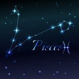 Wodny symbol Pisces zodiaka znak, horoskop, wektorowa sztuka i ilustracja, Obraz Stock