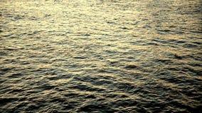 Wodny tło dniem zbiory