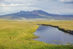 Wodny zatoczka bieg przez obszarów trawiastych w Centennial dolinie blisko Lakeview, MT Zdjęcia Stock