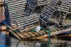 Wodołazu homara oklepowie Zdjęcie Stock