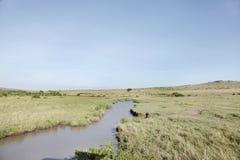 Wodopój pośród sawanna obszaru trawiastego Masai Mara parka narodowego Obraz Stock