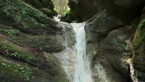 Wodospad leśny z latającymi latarniami napowietrznymi w górach zbiory wideo