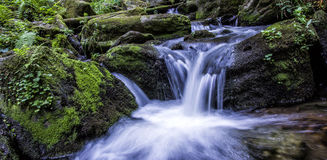wodospad leśna obraz royalty free