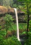 wodospad osrebrzają na południe Zdjęcia Royalty Free