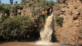 wodospad się kaskadą zbiory wideo