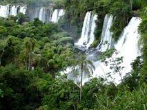 wodospady iguazu Zdjęcie Royalty Free