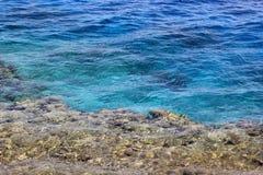 Wody morskiej i rafy koralowa tło Obraz Royalty Free