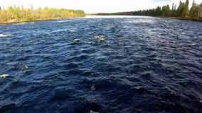 Woedende blauwe waterstroom Scandinavië in de herfst 4K resolutie stock footage