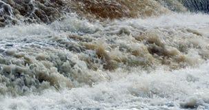 Woedende stroom van de waterval stock video