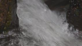 Woedende stroom van de waterval stock videobeelden