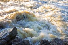 Woedende wateren en duister - Overstromend na verscheidene dagen van stortbui stock foto