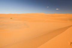 Woestijn Stock Foto