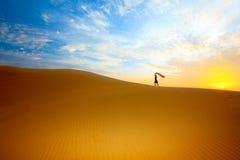 Woestijn royalty-vrije stock fotografie
