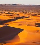 Woestijn stock afbeelding