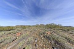 Woestijn Royalty-vrije Stock Afbeelding