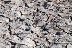 Woestijn Stock Afbeeldingen