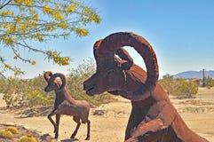 Woestijn anza-Borrego: Het Art. van Big Hornschapen royalty-vrije stock fotografie