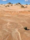 Woestijn, Australië royalty-vrije stock afbeelding