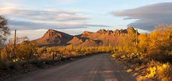 Woestijn bij zonsondergang Royalty-vrije Stock Fotografie