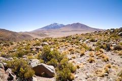 Woestijn, Bolivië Stock Foto's