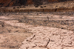 Woestijn in Chili Stock Foto