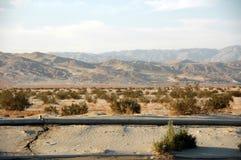 Woestijn in de palmlentes Royalty-vrije Stock Foto's