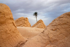 Woestijn de Sahara Royalty-vrije Stock Afbeeldingen