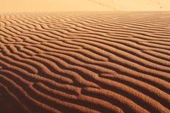 Woestijn de Sahara Stock Afbeelding