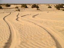 Woestijn de Sahara Stock Foto
