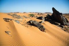 Woestijn dichtbij Meroe Royalty-vrije Stock Foto's