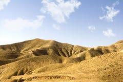 Woestijn in Israël Stock Afbeelding