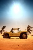 Woestijn met fouten royalty-vrije stock afbeelding
