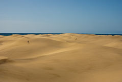 Woestijn met overzees bij horizont Stock Afbeelding