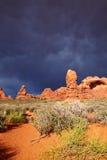 Woestijn na het Onweer royalty-vrije stock afbeeldingen