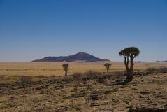 Woestijn Namibië Royalty-vrije Stock Afbeelding