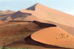 Woestijn in Namibië Royalty-vrije Stock Afbeeldingen