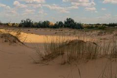 Woestijn onder de gebieden Stock Fotografie