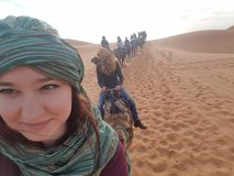 Woestijn op camelback royalty-vrije stock foto's