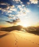 Woestijn op zonsondergang Stock Afbeelding